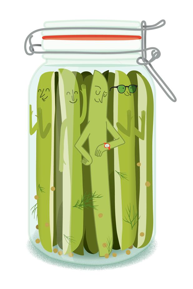 Fermentation - Illustration de cornichons dans un pot
